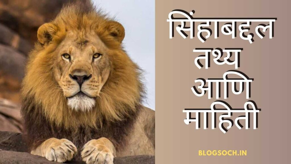 Lion Information in Marathi